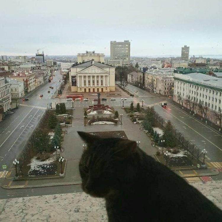 Фото: @rusminnikhanov