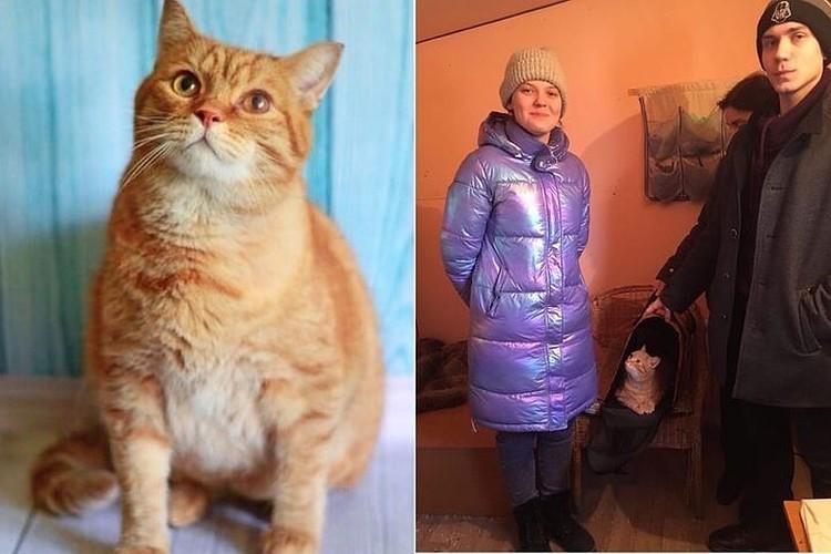 У кота теперь есть новые хозяева. Фото: личный архив героев публикации.