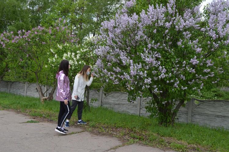 Как живет Донецкий ботанический сад во время режима повышенной готовности