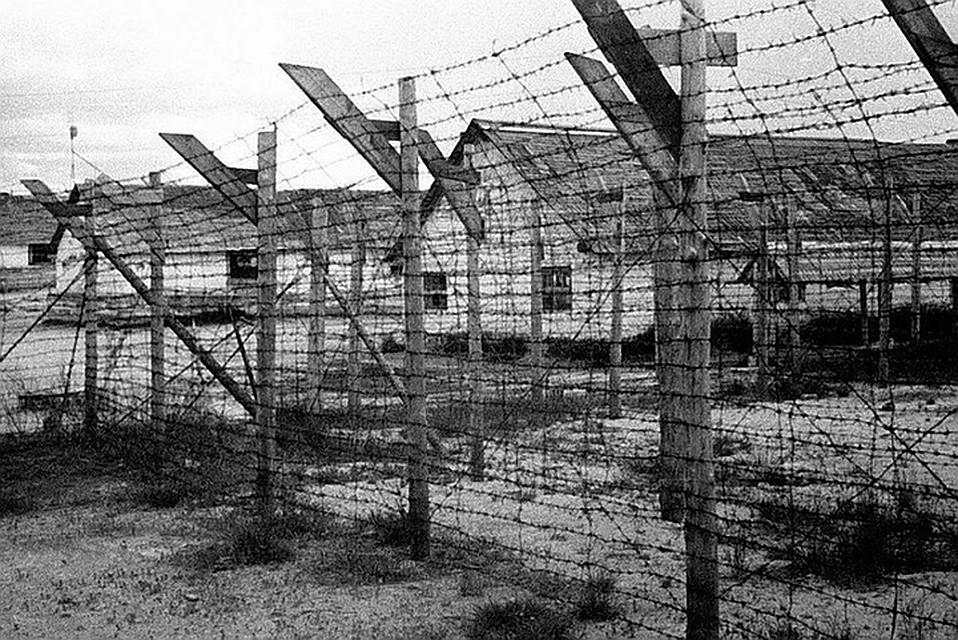 СКР возбудил уголовное дело по статье геноцид Фото: СКР