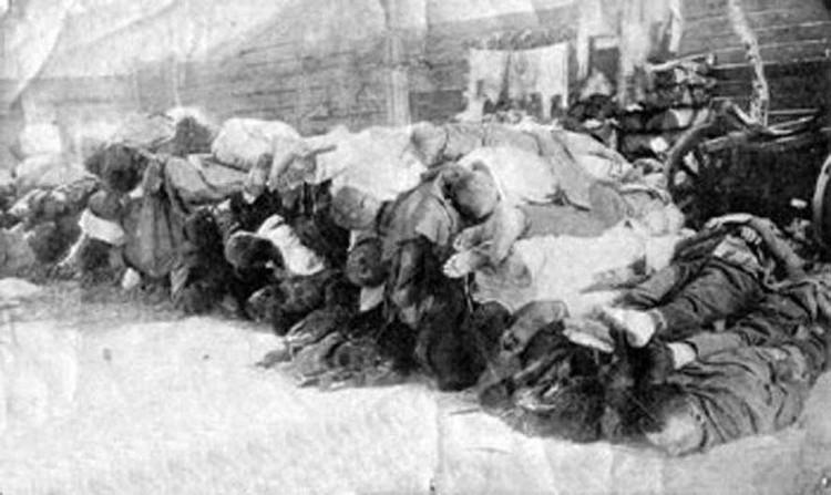 Многие погибли из-за заразы. Фото: предоставлено Музеем города Новосибирска.