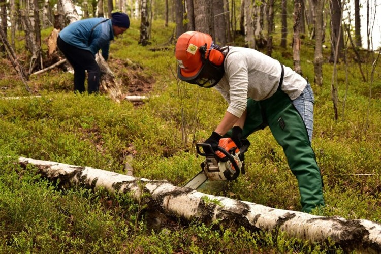Работа волонтеров. Фото: предоставлено Ассоциацией ББТ.