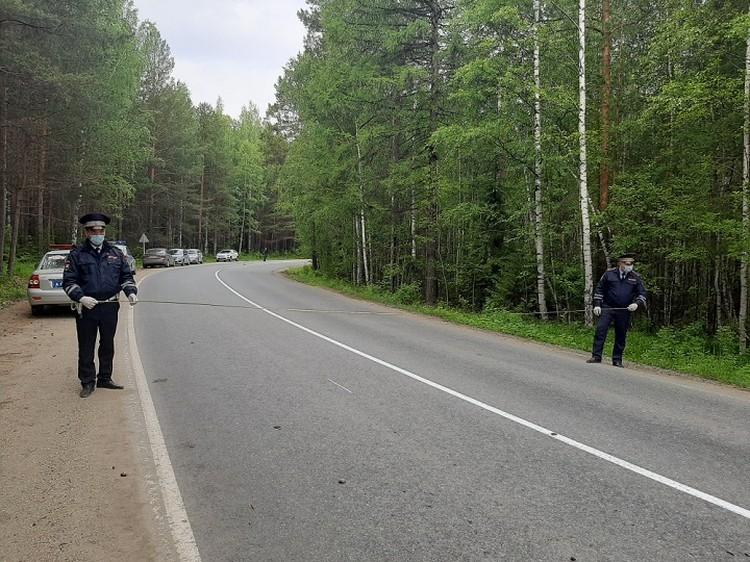 Степень опьянения водителя в четыре раза превышала допустимую норму. Фото: УГИБДД по Свердловской области