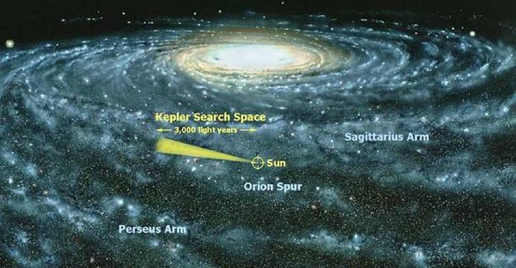 """Телеском Кеплер """"смотрел"""" в сторону созвездия Лебедь."""
