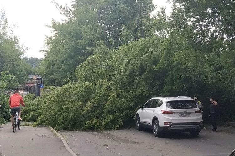Во многих районах Петербурге заблокированы дороги