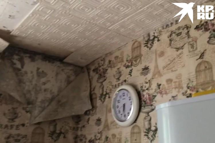 Стены в квартире покрыты грибком. Фото: Анна ТАЖЕЕВА.