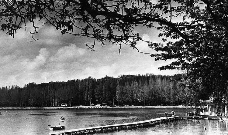 Парк в середине 1960-х. Фото: А.Лысенко