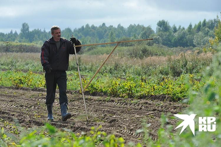 Если вам удастся найти подходящую пустующую землю, то придется для начала потратиться на межевание и кадастровые работы