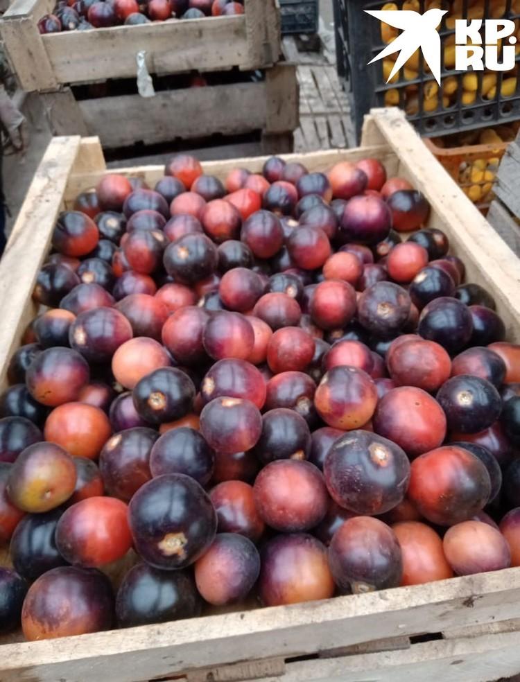 Чтобы получить черный сорт помидоров, использовали семена из Америки и Сибири. Фото: Татьяна ШТАЙНЕРТ.