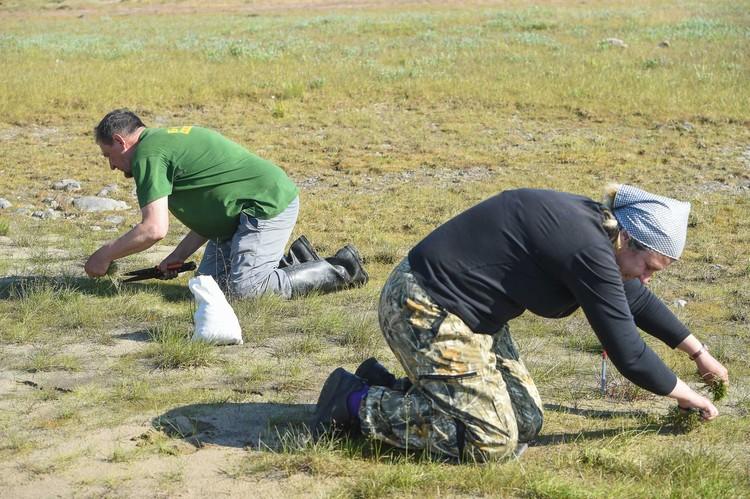 Участники экспедиции отбирают образцы на множество анализов.
