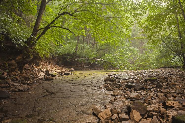 Скалистый каньон реки Рагуша признан памятником природы. Фото: Арсений Кашкаров / ooptlo.beauit.com