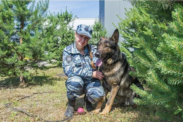 Волк-Меркурий помог найти школьницу