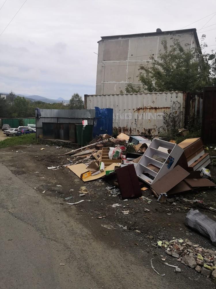 Именно большое количество отходов привлекает свору собак.