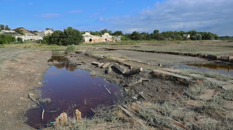 Вместо бассейна - грязная лужа. Фото: пресс-служба главы РК