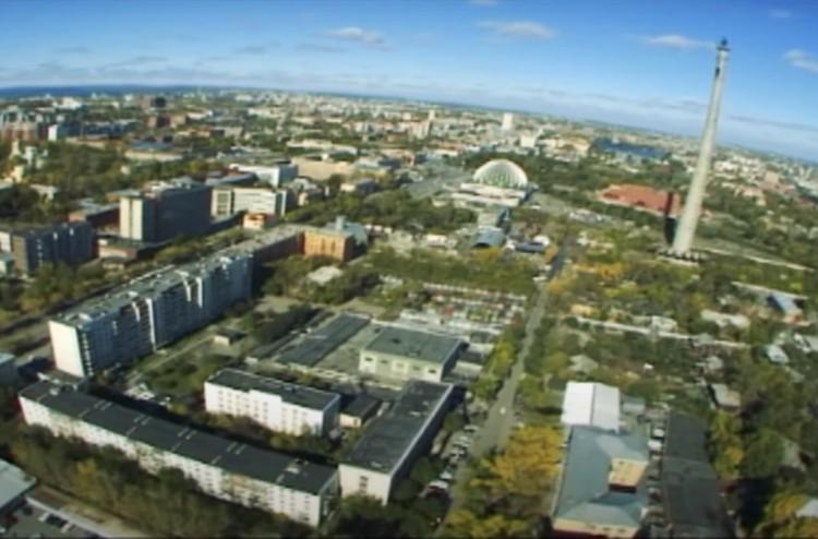 Фото: сркиншот с видео