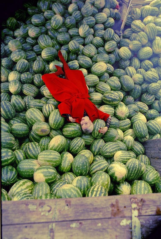 По задумке Гудкова, на площадку доставили аж 16 тонн арбузов. Фото: архив Гудкова
