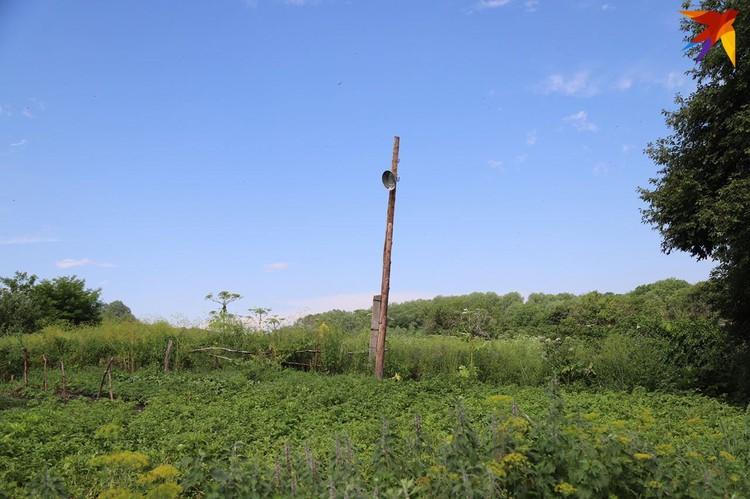 О том, что в хуторе когда-то было электричество, напоминает лишь столб