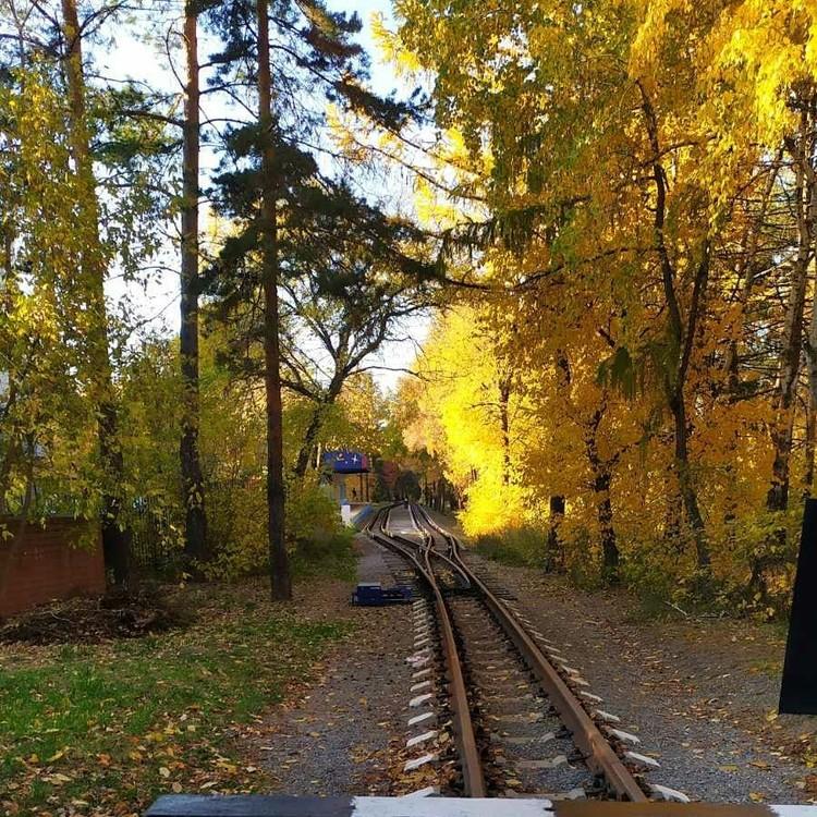 Железная дорога в парке Гагарина. Фото: Instagram / cake_asahobby