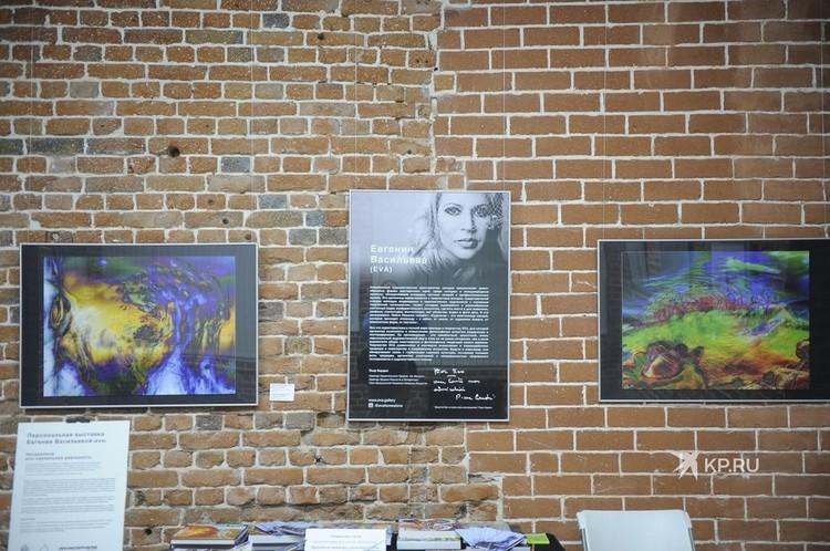 На выставке рассказывается о направлении, в котором работает Евгения Васильева.