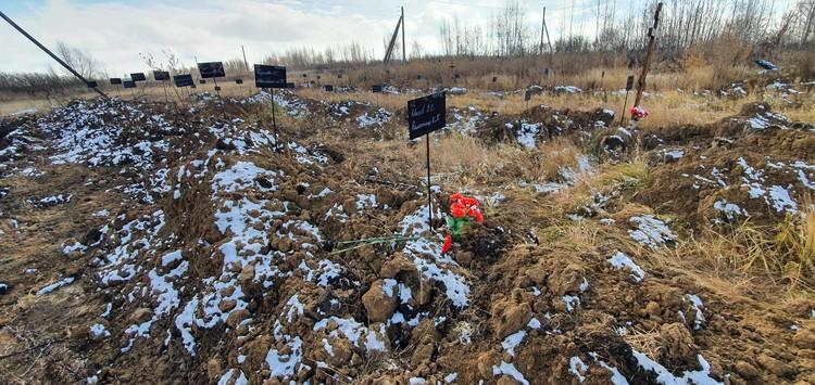Чтобы могила бывшего студента не выглядела так ужасающе, его педагог принес туда цветы.