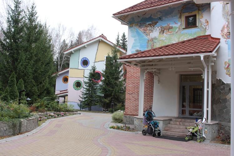 Деньги на строительство паллиативного центра собирали всем миром Фото: центр помощи детям «Радуга»