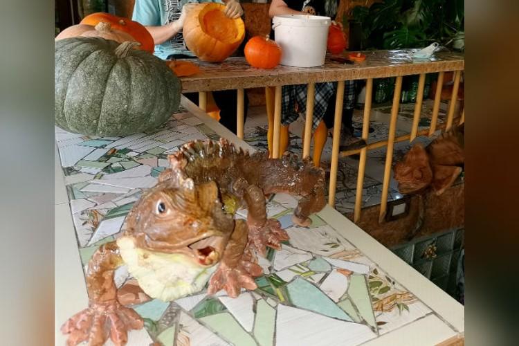 Подготовка к Хэллоуину в самом разгаре. Фото: Иркутская зоогалерея.