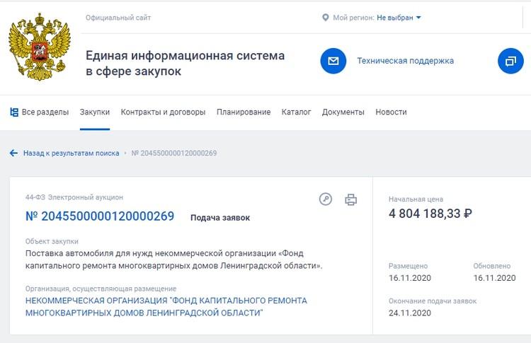 Любопытную закупку нашли в областных СМИ. Фото: zakupki.gov.ru