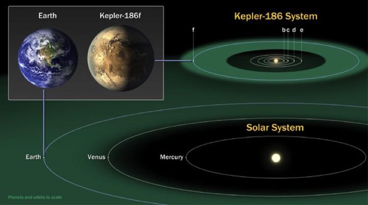 Система, в которой находится планета Kepler-186f .