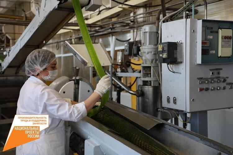 Всего на фабрике 12 производственных линий. Фото: Министерство промышленности и торговли Самарской области