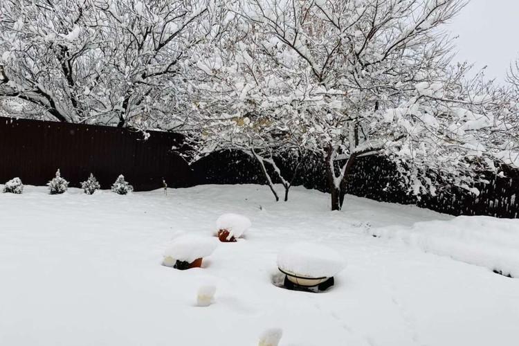 Пролежит ли снег до Нового года, пока большой вопрос.