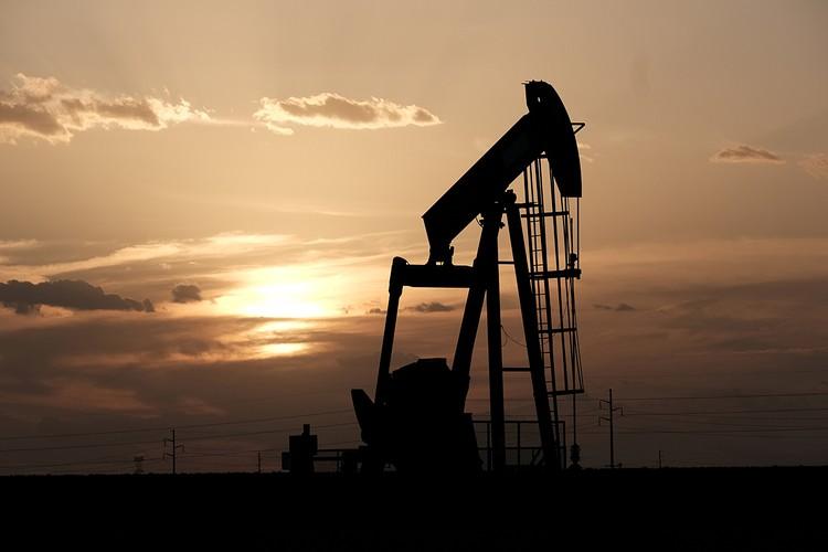Медленный, но верный рост стоимости нефти остановился. Его снова развернул микроскопический вирус