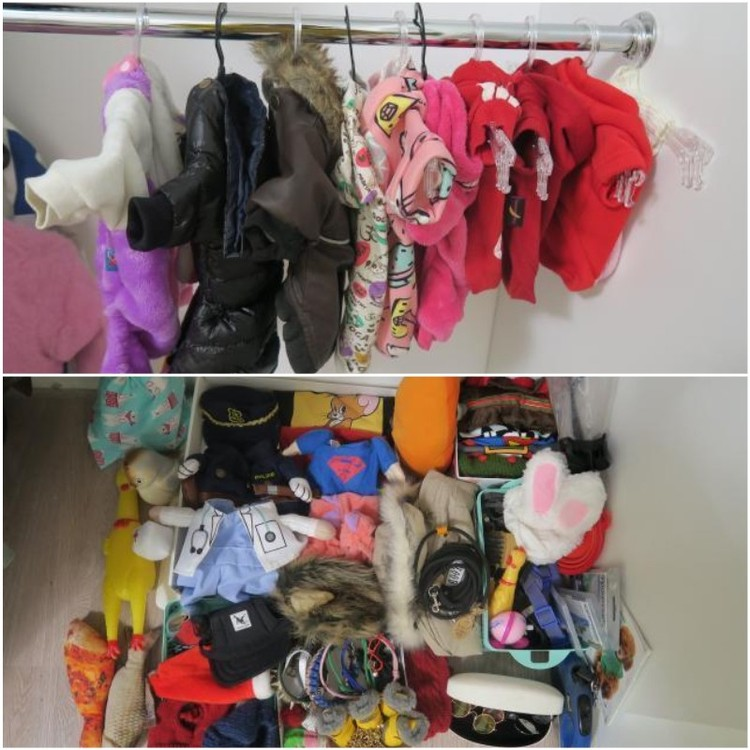 Для вещей питомца супруги выделили в шкафу отдельное место.