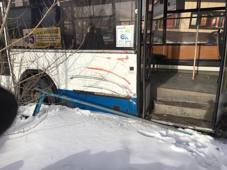 Автобус не пропустил трамвай и врезался в дерево. Фото: пресс-служба Госавтоинспекции