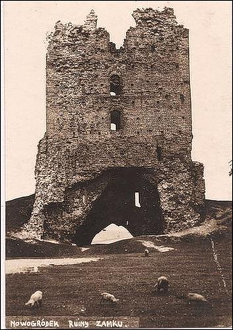 На этой фотографии, сделанной польскими туристами за несколько месяцев до обрушения, видно, что на руинах замка пасутся свиньи. Теперь Щитовку восстановят и откроют в ней музей замка.