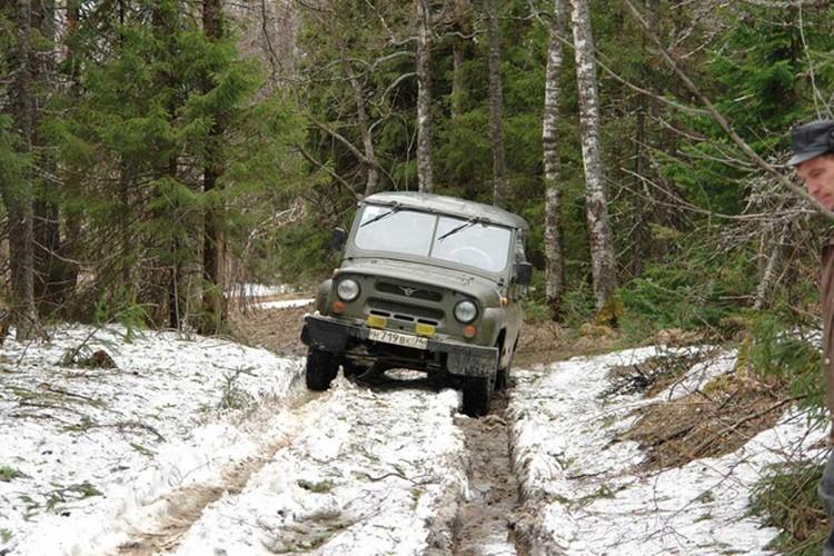 Проехать по лесным дорогам можно только дважды в год