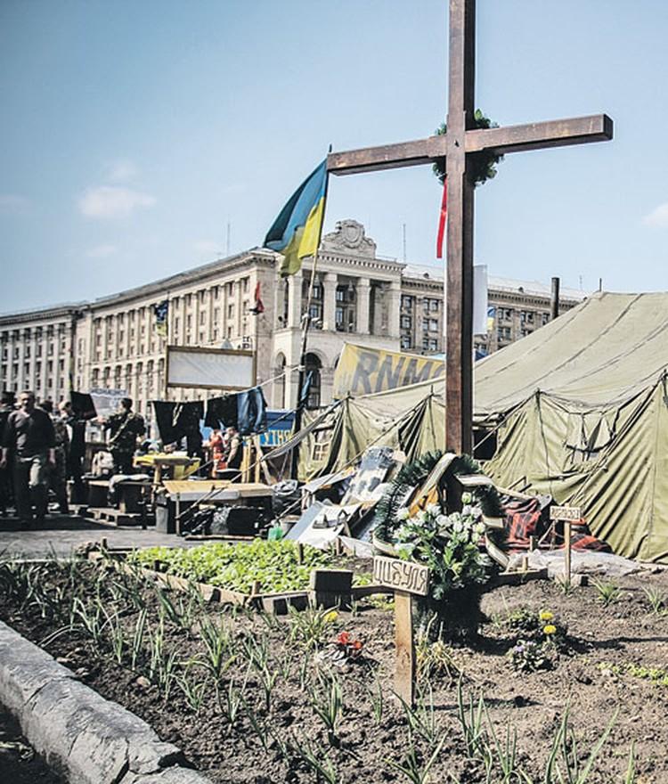 На киевском майдане взошли лук и редиска. Психология деревни все-таки победила...
