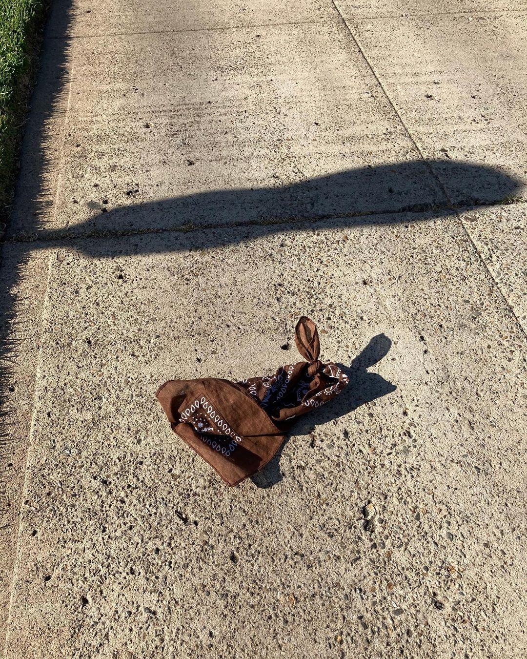 Look! Little lost bunny? Hanx