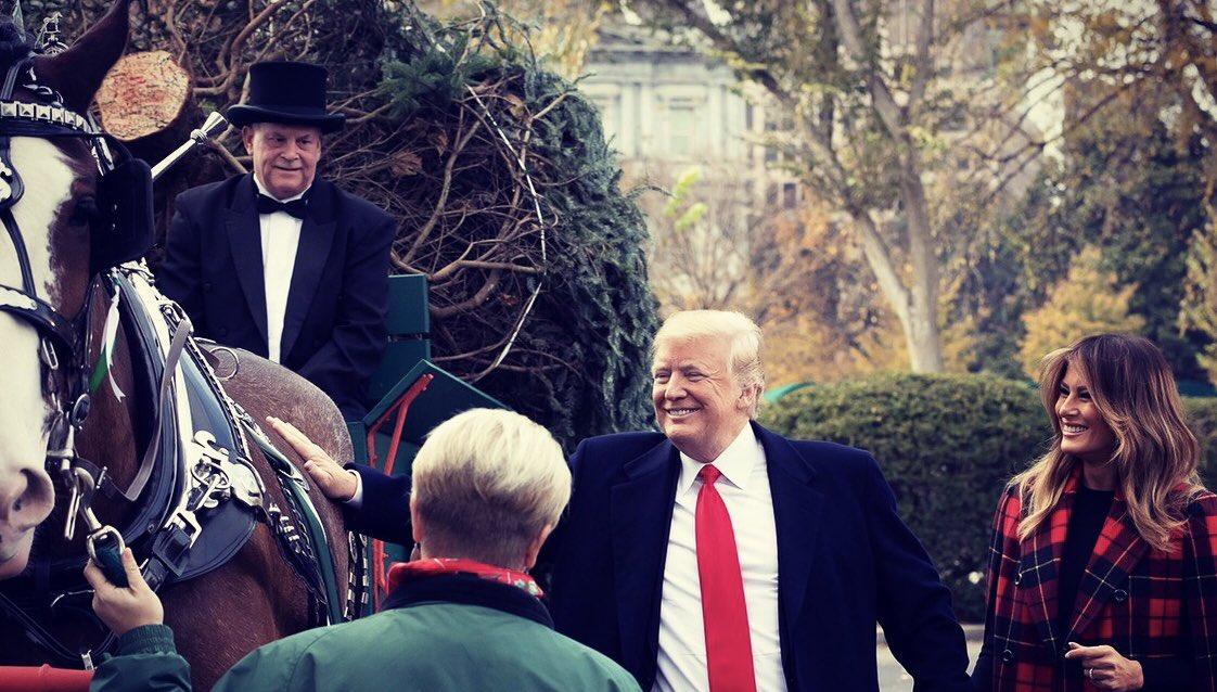Первая леди США лично принимала рождественскую елку